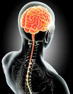 Peripheral Neuropasthy